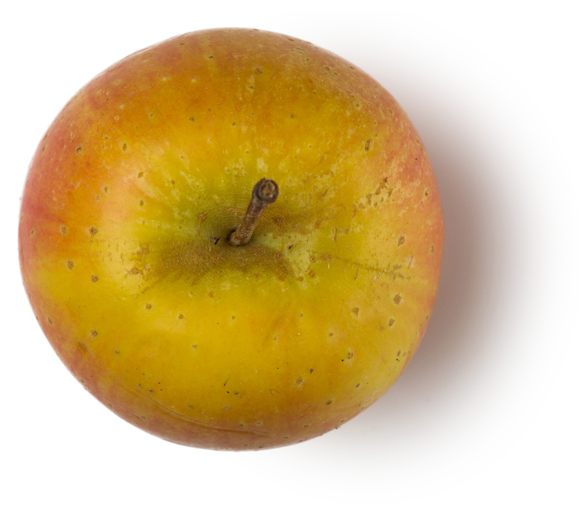 Fresh Apple Pulp - Image