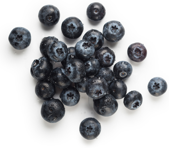 Blueberries  - Image