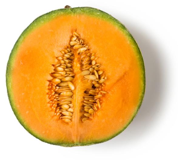 Fresh Cantaloupe Melon - Image