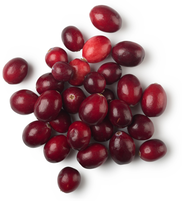 Dried Cranberries - Image
