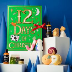 12 Days of Christmas  - Image