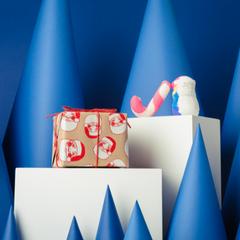 Secret Santa - Image