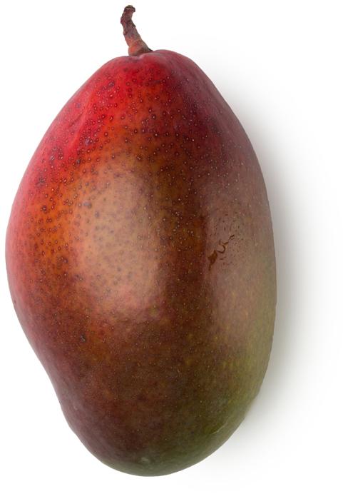 Fresh Mango Juice - Image