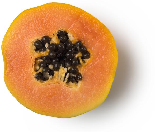 Versgeperste Papaja (Carica papaya) - Afbeelding