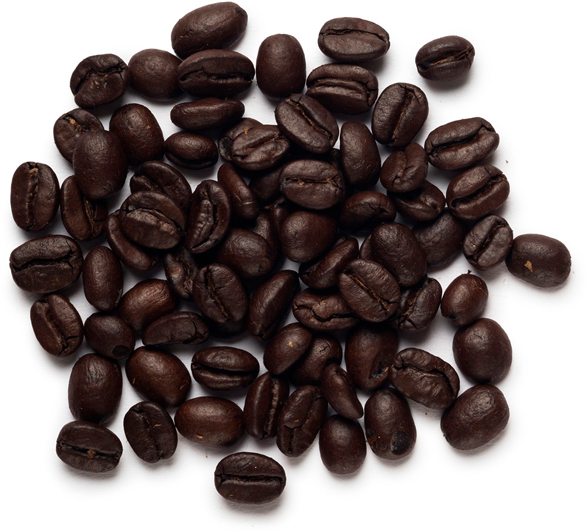 Coffea Arabica Seed Powder (gemahlener Kaffee) - Bild