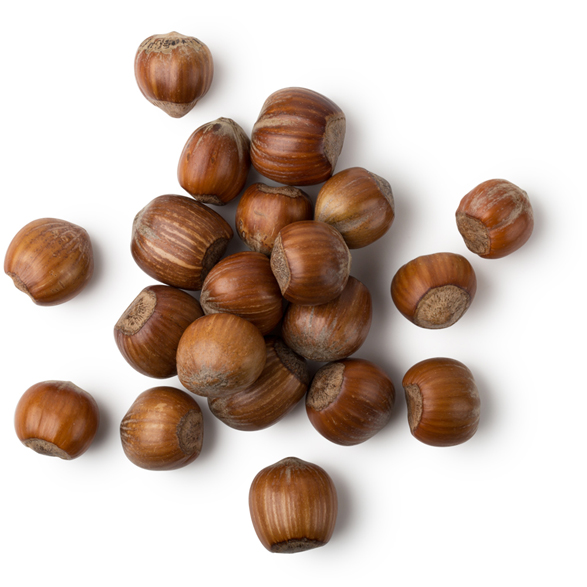 Toasted Hazelnut Oil - Image
