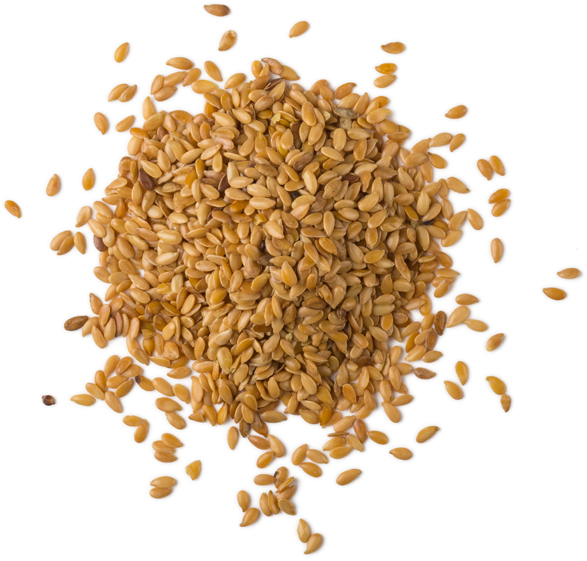 Linseed Extract - Image