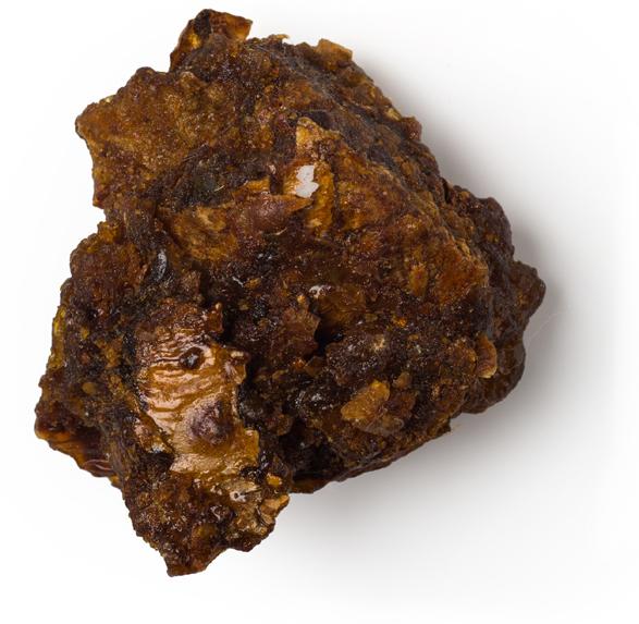 Myrrh Oil - Image