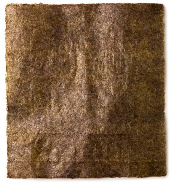 Nori Seaweed - Image