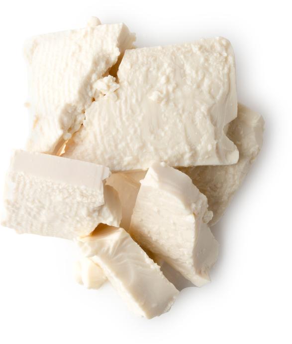 Organic Silken Tofu - Image