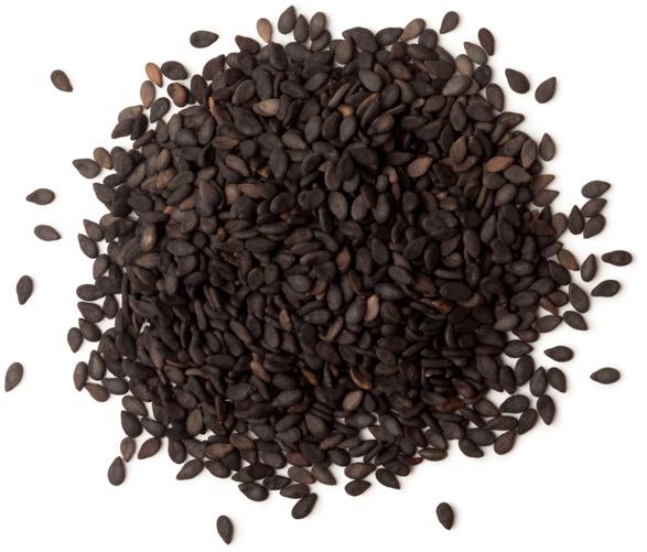 Fair Trade Organic Sesame Oil - Image