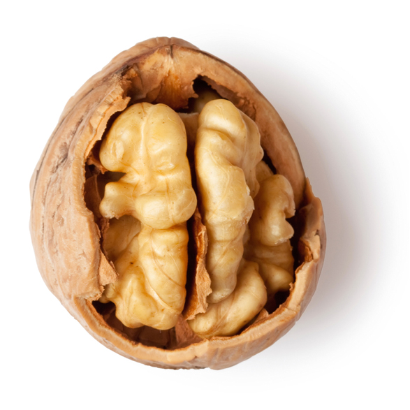 Walnut Oil - Image